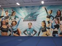 CheerBackdrop